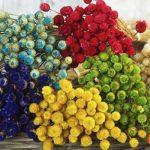 Ramilletes de flores secas teñidas