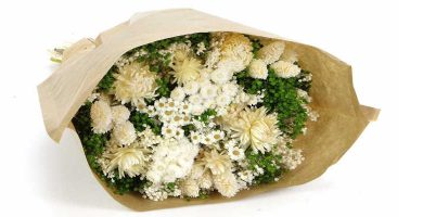 Ramo de flores secas italianas blancas y verdes